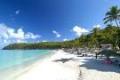 Antigua Beech
