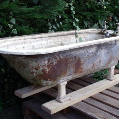 Edwardian Plunger Bath